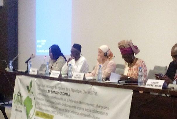16e Conférence ministérielle africaine sur l'environnement