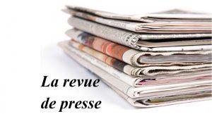 La presse gabonaise lue par l'Agitateur : le cas Aba'a Minko